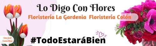 Floristería – Envío de flores Costa Rica