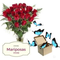 Ramo de rosas y caja con mariposas vivas