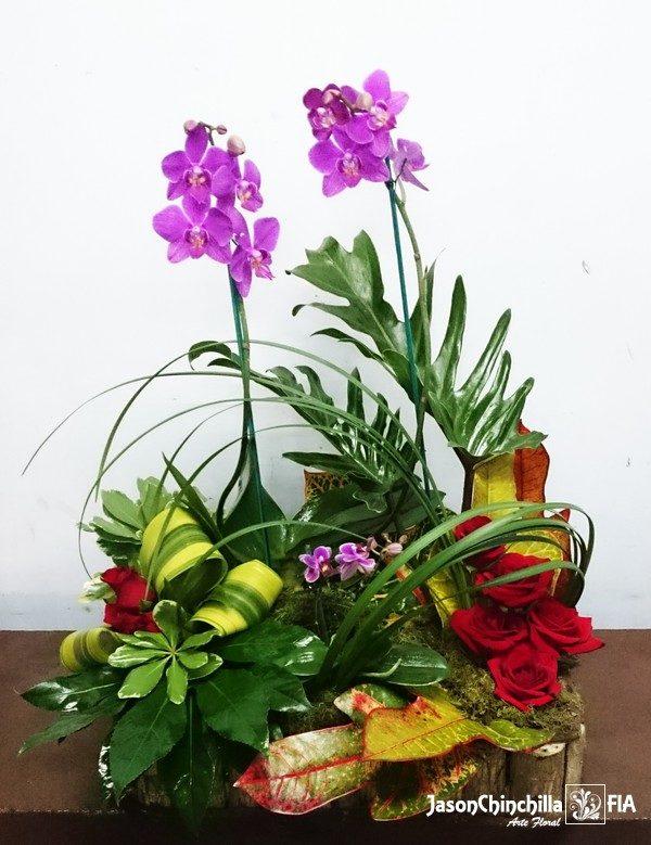 Orquídeas y rosas