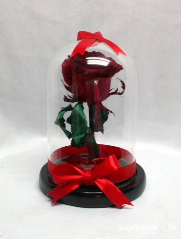 Esp1001 Rosa Eterna Rosa Encapsulada Rosa Conservada