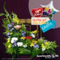 oferta flores